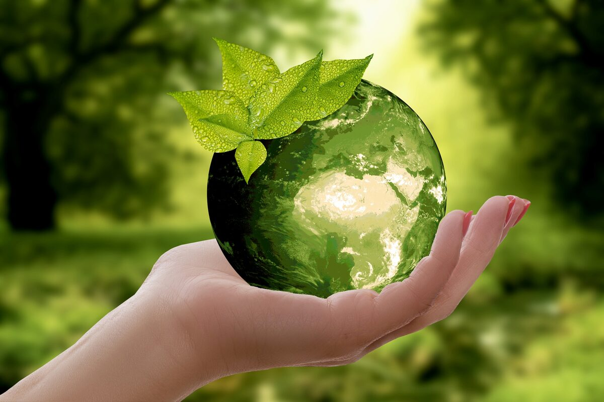 EcoBagShop
